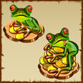 Two frog on a pile of coins fengshui talisman funny feng shui Royalty Free Stock Photography