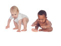 Two funny babies learning to walk Royalty Free Stock Photo