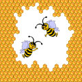 Two funny cartoon bees surrounded by honeycombs vector art illustration Stock Photos
