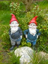 Two funny garden gnomes Royalty Free Stock Photo