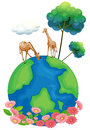 Two giraffes above the earth illustration of on a white background Stock Photo