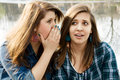 Two girlfriends gossip Royalty Free Stock Images