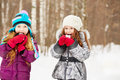 Two girlfriends stand in winter park and eat snowball cheerfully snowballs Royalty Free Stock Image