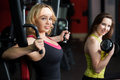 Two girls do weight training in fitness center sporty girlfriends sportswear for arms and chest with dumbbells and on apparatus Royalty Free Stock Photography