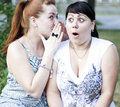 Two girls gossip Royalty Free Stock Photo
