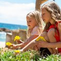 Two girls picking flowers portrait of girlfriends at seaside Royalty Free Stock Images