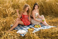 Two girls on picnic in wheat field Royalty Free Stock Photo