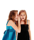 Two girls sharing secrets young pretty sisters some one whispering in the ear of the other one closeup isolated for white Stock Images