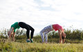 Two girls training young together outdoors stretching exercises Royalty Free Stock Photos