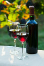 Two glasses of red wine and bottle Royalty Free Stock Image