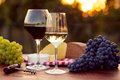 Two glasses of white and red wine Royalty Free Stock Photo