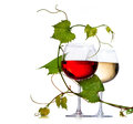 Two glasses of wine red and white decorated with grape leaves Stock Photos