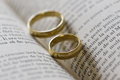 Two gold rings on a open book Stock Photography