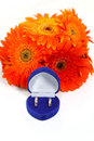 Two gold wedding rings blue box bouquet orange gerberas Stock Images