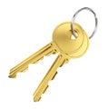 Two golden door keys Royalty Free Stock Photo