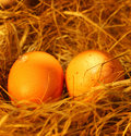 Two golden eggs Stock Photo