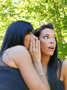 Two gossiping girls Royalty Free Stock Image