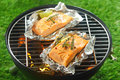 Two gourmet salmon cutlets grilling on a fire seasoned with fresh herbs in portable barbecue outdoors grass ready to be Stock Image
