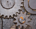 Two greased gears close up Royalty Free Stock Photo