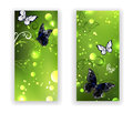 Two green banner with butterflies Royalty Free Stock Photo