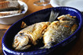 Two grilled fish bream on blue plate with bread Stock Photos