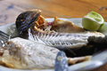 Two grilled fish bream on blue plate with lemon Royalty Free Stock Photo