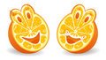 Two halfs of orange Royalty Free Stock Photo