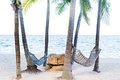 Two hammock between palm trees on tropical beach Stock Photo