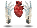 Two hand shaped light bulbs frame heart human Stock Photo