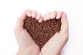 Two hands holding chocolate sprinkles pure in the form of a heart Royalty Free Stock Photo