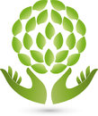 Two hands and leaves, plants, naturopath and wellness logo
