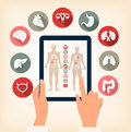 Two hands touching screen of a tablet with human organ icons. Vector. Royalty Free Stock Photo