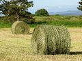 Two Hay Rolls in field Royalty Free Stock Photography