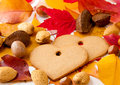 Two heart shaped cookies between autumn leaves and nuts selective focus Stock Photos