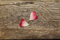 Two heart shaped rose petals cut out in heart shape Royalty Free Stock Photo