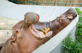 Two hippopotamuses hippopotamus amphibius open mouth big teeth Stock Photos