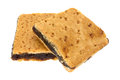 Two homemade fig bar squares on a white background Royalty Free Stock Photo