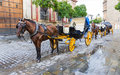 Two horse carriage carriages in front of seville s cathedral spain Stock Images