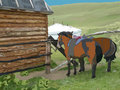 Two horses in front of the wooden house Stock Image