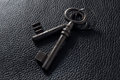 Two keys on black leather Royalty Free Stock Image