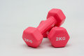 Two 2kilo weights Royalty Free Stock Photo