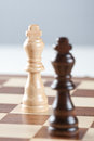 Two kings on chess board Stock Image