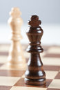 Two kings on chess board Stock Photography