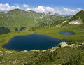 Two lakes in the mountains with grass and flowers high up at front Royalty Free Stock Images
