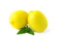 Two large yellow lemons Royalty Free Stock Photo