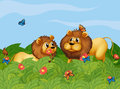 Two lions in the garden with butterflies Royalty Free Stock Photo