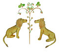 Two lions Royalty Free Stock Photo