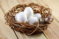 Two little birds on a nest with eggs white Royalty Free Stock Image