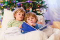 Two little blond sibling boys reading a book on christmas in bed near tree with lights and illumination happy family of brothers Stock Photo