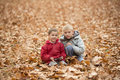Two little boys in autumn park brothers play together sitting on ground outdoor Stock Photography